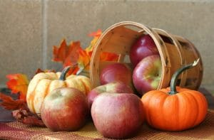 Bushel of red apples with pumpkins and autumn leaves. Therapists can harvest a bushel of higher search rankings using our SEO services!